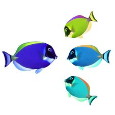 Free Colorful Fishes Stock Photography - 17170242