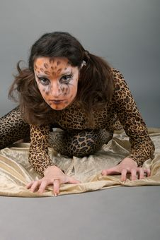 Free Portrait Of Girl With Leopard S Face-art Royalty Free Stock Photography - 17171087