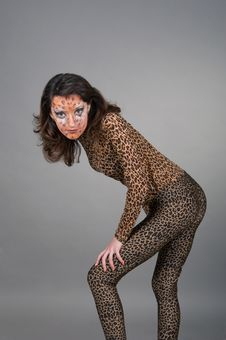 Free Portrait Of Girl With Leopard S Face-art Stock Images - 17171154