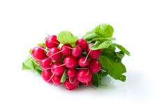 Free Freshly Harvested Radishes Royalty Free Stock Image - 17172396