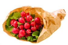 Free Freshly Harvested Radishes Stock Photography - 17172412