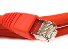 Free Ethernet Cable Royalty Free Stock Photo - 17173945