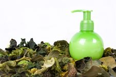 Free Green Cream Bottle With Some Dry Leaves Stock Image - 17174131