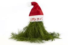 Free Christmas Dill On Santa Hat Royalty Free Stock Images - 17174509