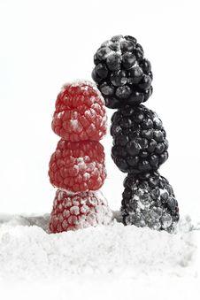 Free Raspberry And Blackberry Stock Photos - 17174603