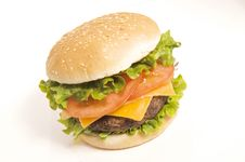 Free Cheeseburger Stock Images - 17178014