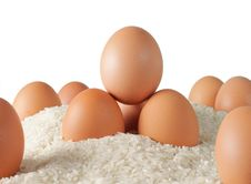 Free Eggs And Rice Royalty Free Stock Photography - 17178097