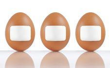 Free Labeled Eggs Royalty Free Stock Photography - 17178357