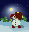 Free Snowman With Gift Bag In The Night Stock Image - 17182681