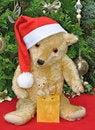 Free Christmas Bears Stock Images - 17187194