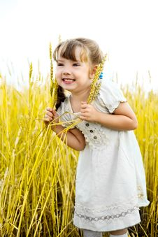 Free Girl In The Field Royalty Free Stock Photography - 17181277