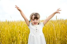 Free Girl In The Field Royalty Free Stock Photos - 17181298