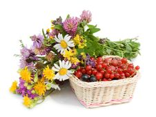 Free Ripe Berries In A Basket And Flowers Royalty Free Stock Photo - 17181525