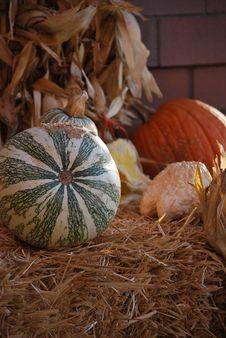 Free Autumn Harvest Royalty Free Stock Photos - 17181608