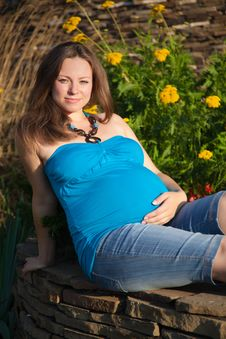 Free Portrait Of Happy Pregnant Woman Royalty Free Stock Photography - 17182307