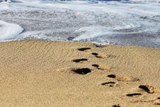 Free Footprints On The Beach Royalty Free Stock Images - 17183069