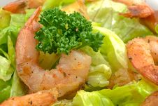 Free Prawn Salad Royalty Free Stock Photos - 17185188