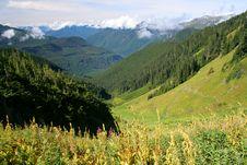 Mountain Meadow Royalty Free Stock Photo