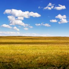 Free Clear Meadow Stock Photo - 17189590