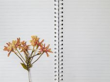 Free Pressed Dry Flower On Two Page Note Book Royalty Free Stock Photography - 17190117