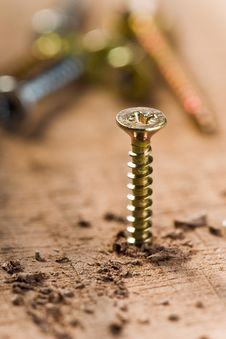 Free Screw With Wood Shavings Royalty Free Stock Images - 17193159