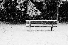 Free A Bench: Solitude In The Snow Storm Royalty Free Stock Photos - 17195158