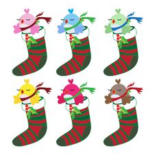 Free Christmas Bird Set In Socks Royalty Free Stock Images - 17197879
