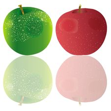 Free Two Apples Stock Photo - 17199070