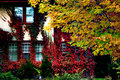 Free Autumn Colors Royalty Free Stock Image - 1723966