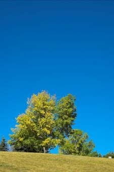 Free Fall Season Stock Image - 1729731