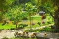 Free Tropical Garden Stock Photography - 17202222
