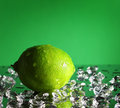 Free Whole Lime Royalty Free Stock Images - 17203009