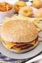 Free Cheeseburger Royalty Free Stock Photography - 17205257