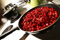 Free Cranberries Stock Photography - 17205572