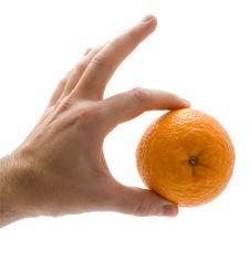 Free Orange Stock Image - 17201411