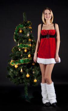 Free Santa Girl With Christmas Tree Royalty Free Stock Photos - 17204348