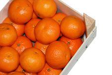 Free Orange Box Stock Photos - 17205243