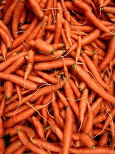 Free Bunch Of Carrots Royalty Free Stock Image - 17206076