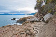 Free Coastline Of Anacortes, Washington Royalty Free Stock Photo - 17207005