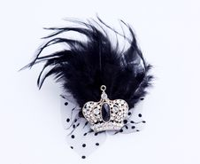Free Feather Jewelry Royalty Free Stock Images - 17209609