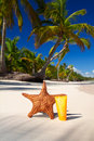 Free Starfish And Sun Protection Tube Stock Image - 17216871