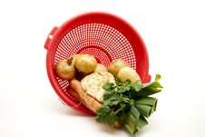 Free Soup Vegetable In The Sieve Stock Images - 17210424