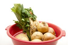 Free Soup Vegetable In The Sieve Royalty Free Stock Images - 17210479