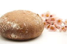 Round Bread With Flower Stock Image