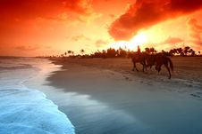 Free Ocean Sunrice Stock Image - 17215711