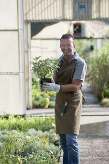 Free Gardener At Work Stock Images - 17215864