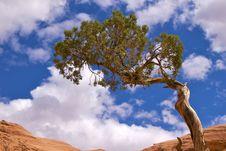 Free Corona Arch Trail Stock Image - 17216411