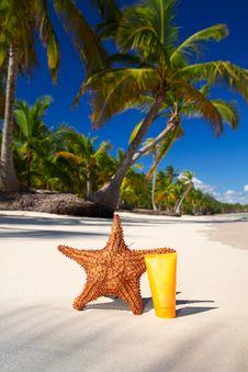 Starfish And Sun Protection Tube Stock Image