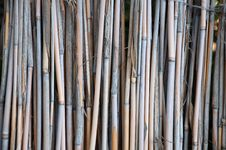 Free Bamboo Fence Royalty Free Stock Photo - 17218375