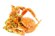 Free Stir-Fried Crab Stock Images - 17218774